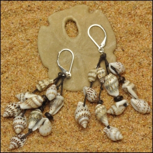 Shells and Coconut Earrings