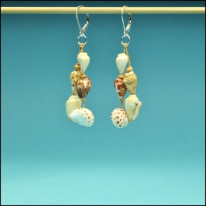 Tiger Moon and Nassa Shell Earrings